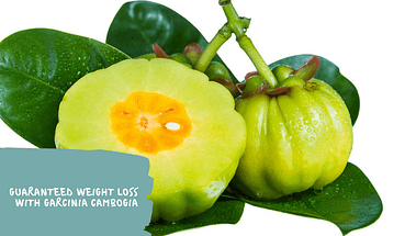 Benefits Of Garcinia Cambogia To Lose Weight Shifa Gah